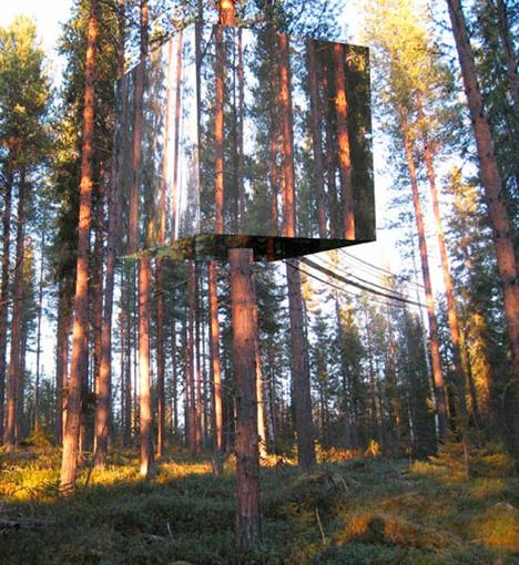 tv-rendering-trees